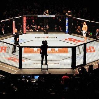 LIVE - UFC MMA Live Stream Full Online - Fight Media