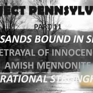 PROJECT PENNSYLVANIA PART 11 BETRAYAL OF INNOCENCE - STONGHOLDS