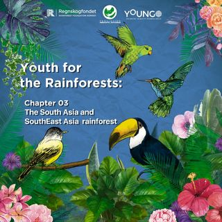 South Asia and SouthEast Asia rainforest
