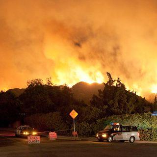Dagli incendi danni a lungo a termine per il suolo. Le lezioni di USA ed Europa