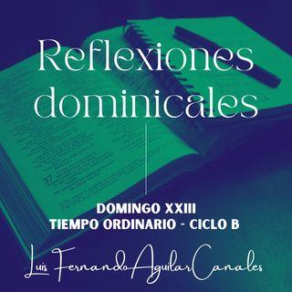 DOMINGO XXIII T.O. - CICLO B