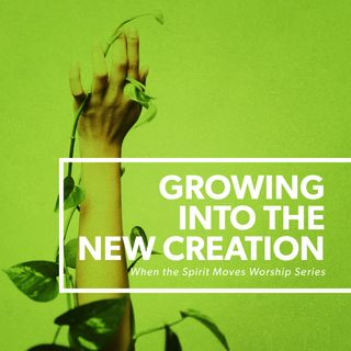 Growing in the New Creation