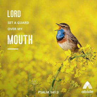Guarding What You Say