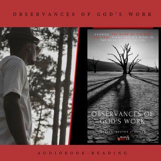 Observances Of God's Work- AudioBook by Brotha J