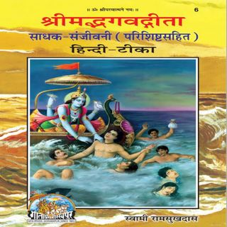 Gita Chapter 4 Shloka 20 Parishisht Bhav