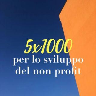 Il 5 per mille per lo sviluppo del non profit