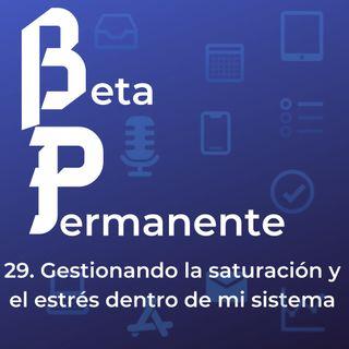 BP29 - Gestionando la saturación y el estrés dentro de mi sistema