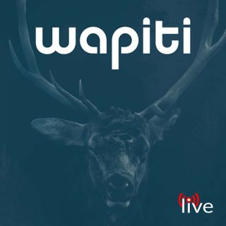 A Complete Revamp + The Foundation of Wapiti