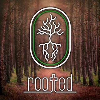 What Is Rooted all About?