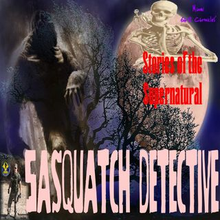 Sasquatch Detective | Interview with Steve Kulls | Podcast