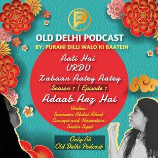 Aati Hai Urdu Zabaan Aatey Aatey | S1 | E1 - Adaab Arz Hai - old Delhi Podcast