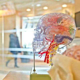 Congreso de Epilepsia Centro Médico ABC