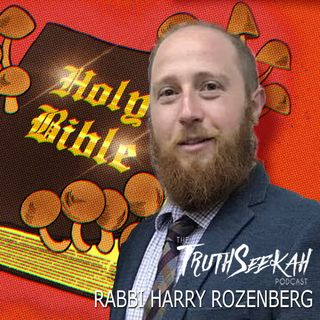 Psychedelics in the Bible | Rabbi Harry Rozenberg