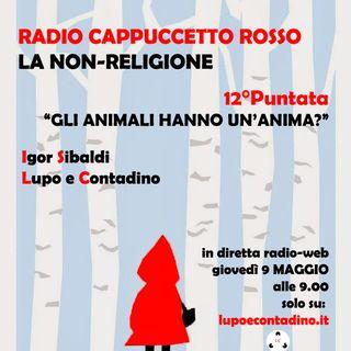 Radio Cappuccetto Rosso | Tredici | Gli animali hanno un'anima?