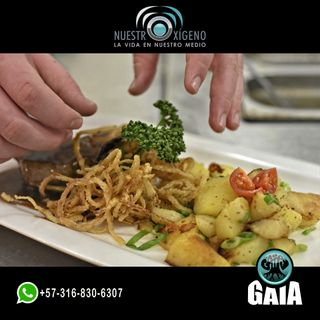 NUESTRO OXÍGENO La gastronomía y la nutrición espacial - Chef. Alexander Méndez