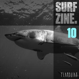 10 - Ataque de tubarão, afogamentos no surf e outras notícias da semana