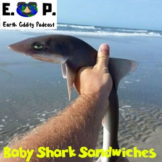 Earth Oddity 54: Baby Shark Sandwiches