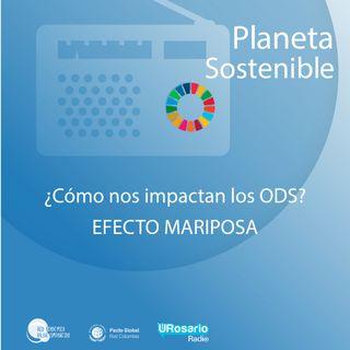 ¿Cómo conectamos el efecto mariposa con los objetivos de desarrollo sostenible?