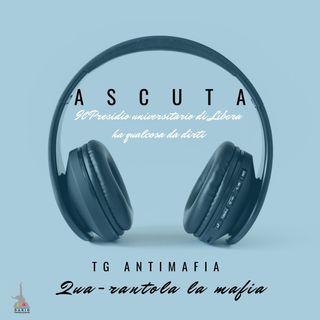 "Tg Antimafia - ""Qua-rantola la mafia"""