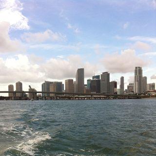 Miami Despierta 07-02-2015