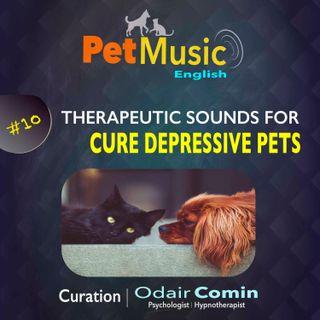 #10 Therapeutic Sounds for Depressive Pets | PetMusic