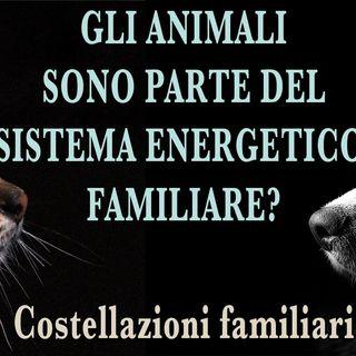 Gli animali sono parte del sistema famigliare