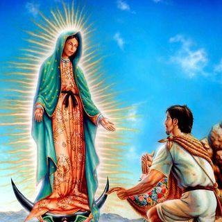 49 - Guadalupe: pietra angolare della cristianità americana