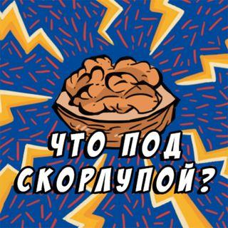 Шизофрения и биполярное расстройство: при чем тут мозг?