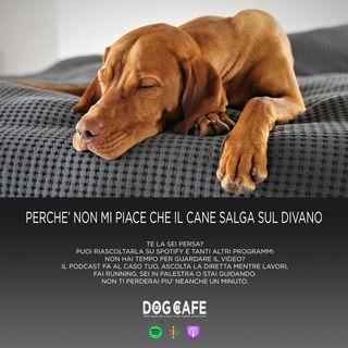 #060 - Perchè non mi piace che il cane salga sul divano