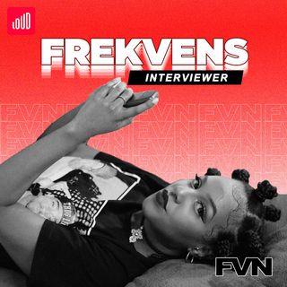 Frekvens interviewer FVN