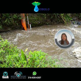 NUESTRO OXÍGENO Alianza de lo público y la comunidad por el agua - Amalia Morales