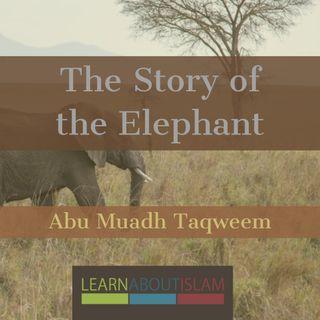 The Story of the Elephant (Tafseer of Surah Al-Fil) - Abu Muadh Taqweem Aslam