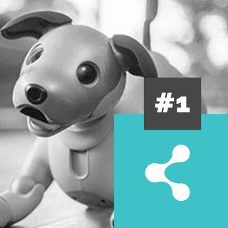 Marketing, robôs e cachorros