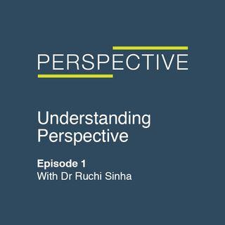 Understanding Perspective