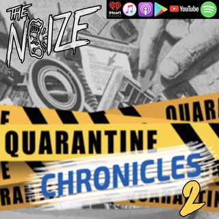 Quarantine Chronicles 2