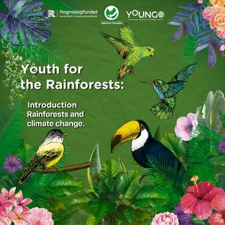 Introduction - Rainforests and climate change