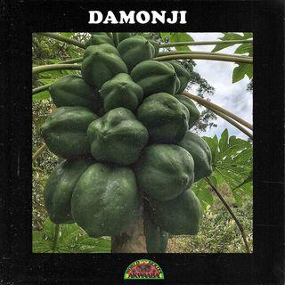 AWS05: Damonji