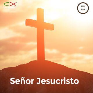 Oración 27 de marzo ( Señor Jesucristo )