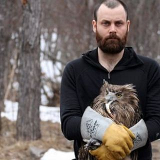 The hunt for the world's largest owl