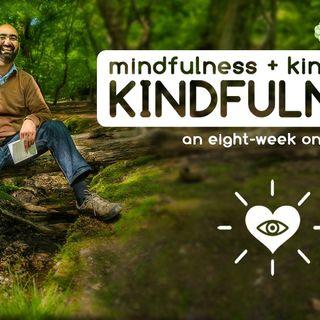 The Art of Kindfulness