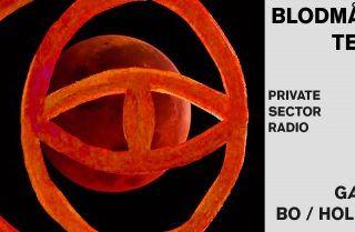 'Private Sector': Blodmåne Tema