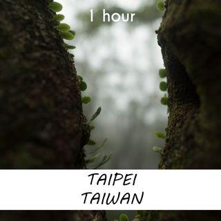 Taipei, Taiwan | 1 hour RAIN Sound Podcast | White Noise | ASMR sounds for deep Sleep | Relax | Meditation | Colicky