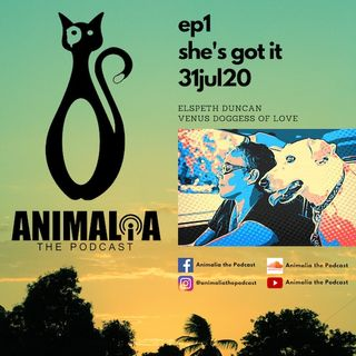 ANIMALIA 01 - She's Got It - 31Jul20