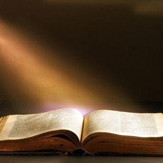 Psalm 119:129-136