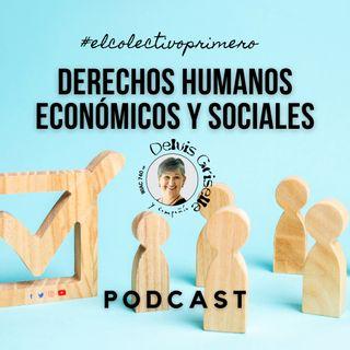 Derechos humanos económicos y sociales