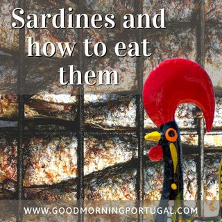 Portugal news, weather and how to eat sardines!
