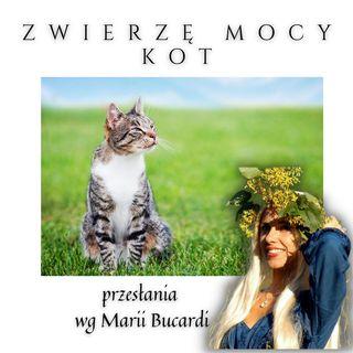 Zwierzę Mocy - Kot - pewność siebie, niezależność, magia, misteria, powołanie -  Maria Bucardi
