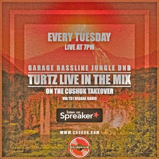 The Cush:UK Takeover Show - EP.134 - Turtz Live In The Mix