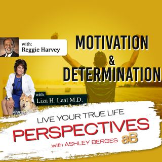 Determination plus Motivation equals Success Ep. [616]