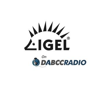 IGEL Co-Terming License Discussion with Siegfried Schütz - Podcast Episode 336